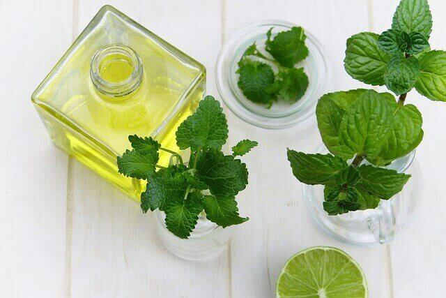 Essential Oils For Nausea - Peppermint Oil
