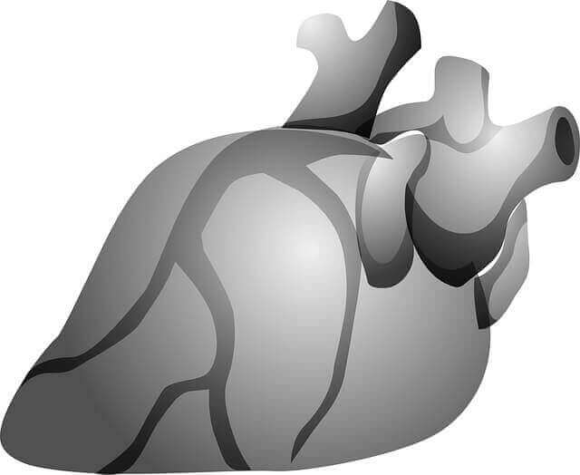 L Carnitine Benefits for heart