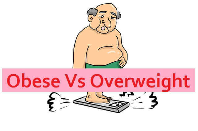 Obese Vs Overweight
