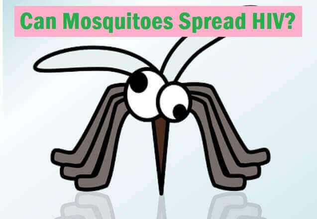 Can Mosquitoes Spread HIV - Explanation