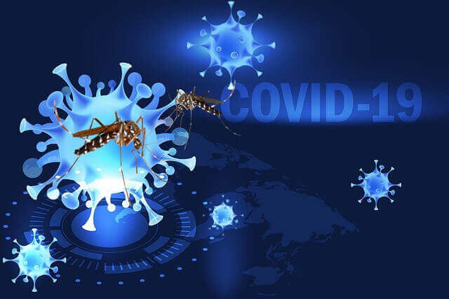 Can Mosquitoes Spread COVID