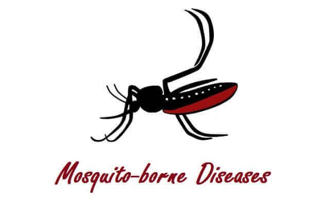 Mosquito-borne Diseases - Zika