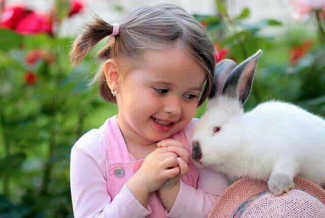 Rabbit Fever