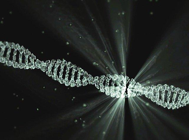 DNA Definition